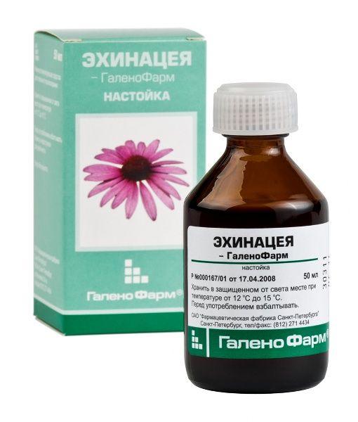 Эхинацея настойка: инструкция по применению для иммунитета
