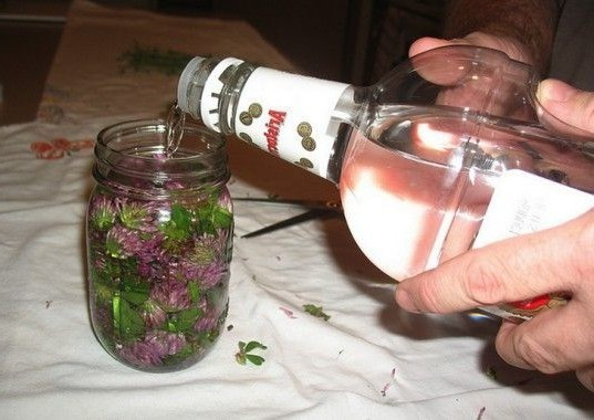 настойка из клюквы на спирте в домашних условиях рецепты
