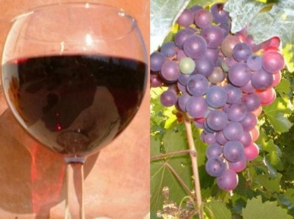 Крепленое вино из винограда - рецепт с изабеллой 1