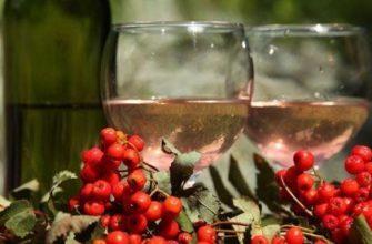 Вино из красной рябины в домашних условиях 30